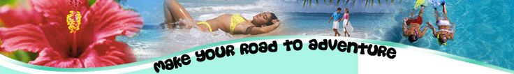 Hawaii Camping | VW Campers | Hawaii Vacation Rentals | VW Camper Rentals