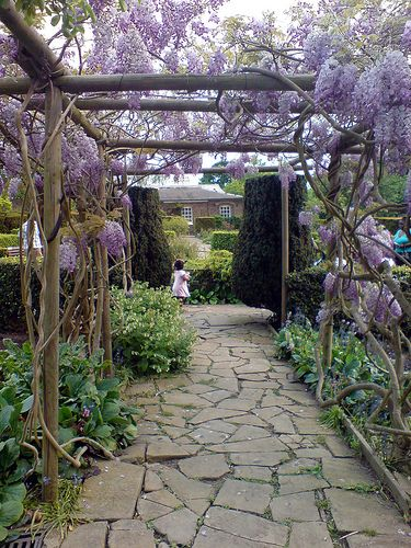 Google Image Result for http://blog.builddirect.com/wp-content/uploads/2011/07/Arbor-Wisteria.jpg