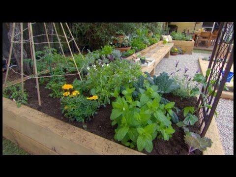 669 best Garden~how to images on Pinterest | Gardening, Backyard ...