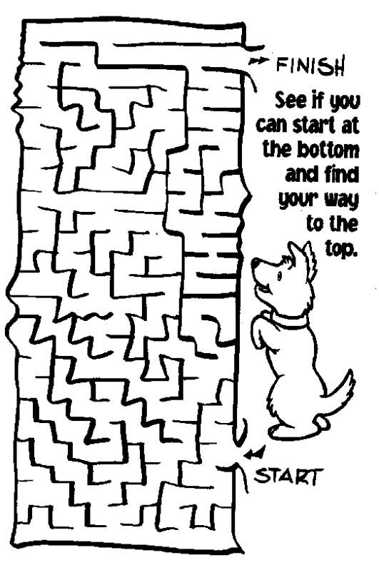 21 best mazes crosswords puzzles images on Pinterest