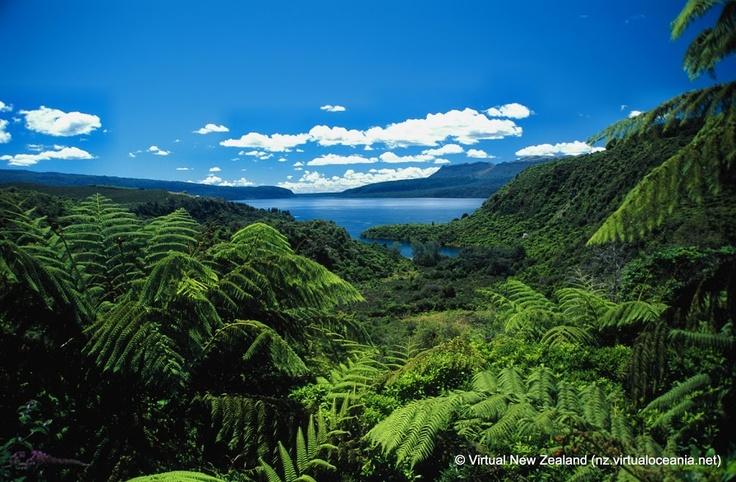 Beautiful New Zealand!  Lake Tarawera, Rotorua.