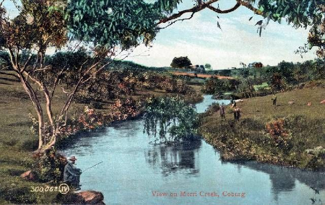 The view on Merri Creek, Coburg c.1900