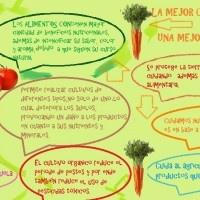 ¡Sí! Elijamos Orgánicos - Reparto a domicilio de frutas y verduras, Biowasiorgánico. Por un mundo más saludable, sin transgenicos, pesticidas ni agrotóxicos. Si alguna vez de has preguntado ¿Por qué elegir productos orgánicos? haz click en la foto y encontraras la respuesta.