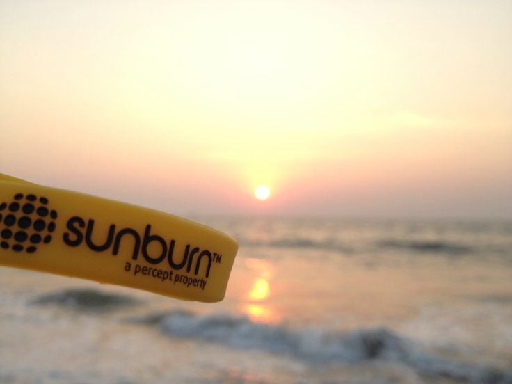 Sunburn Goa 2012