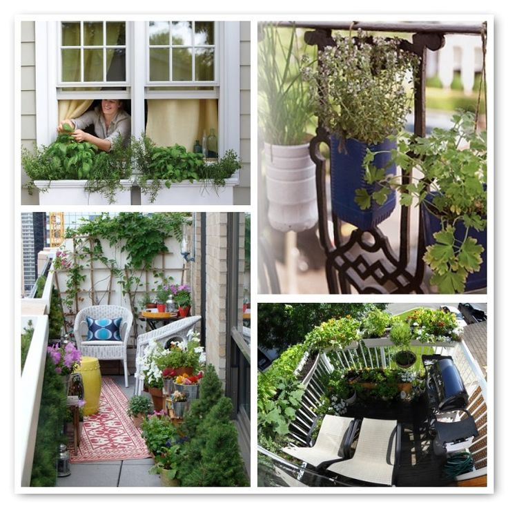 35 best Inspiration Kitchen Gardens images on Pinterest Edible