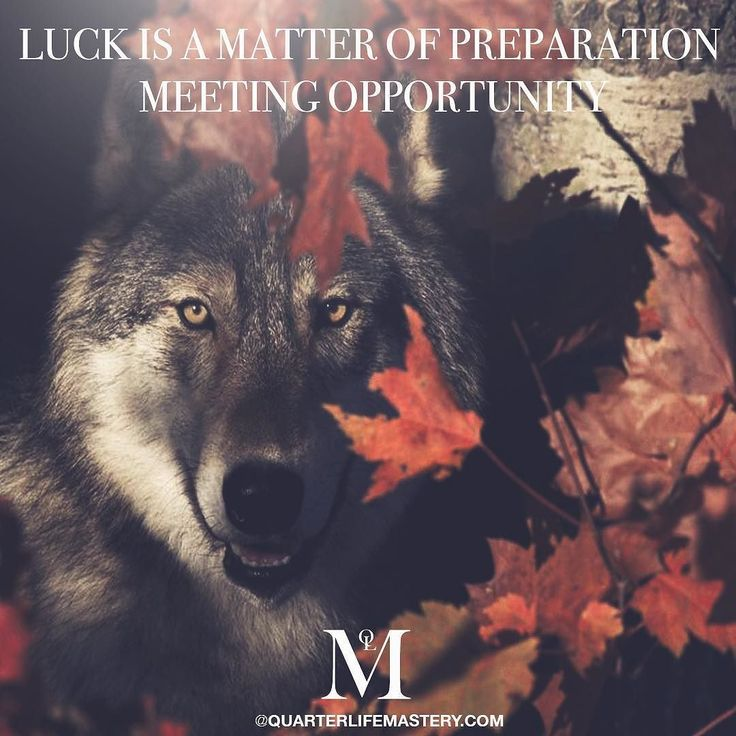 There are fleeting moments that come along. Sometimes these will be amazing opportunities make sure your prepared and ready for them so that you can capitalise. Most of the time we engineer our own luck years and years before the opportunity presents itself.