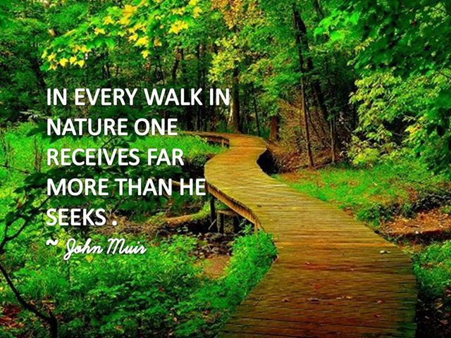17 Best Images About Inspirational Nature Quotes On Pinterest Education Indiana And Sunrise