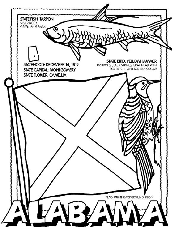Use crayola crayons markers or colored pencils to color for Alabama state flag coloring page