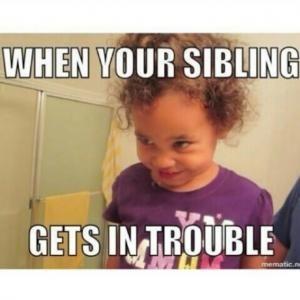 Funny Sibling Memes
