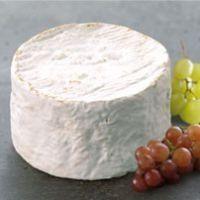 Chaource - Qui veut du Fromage !