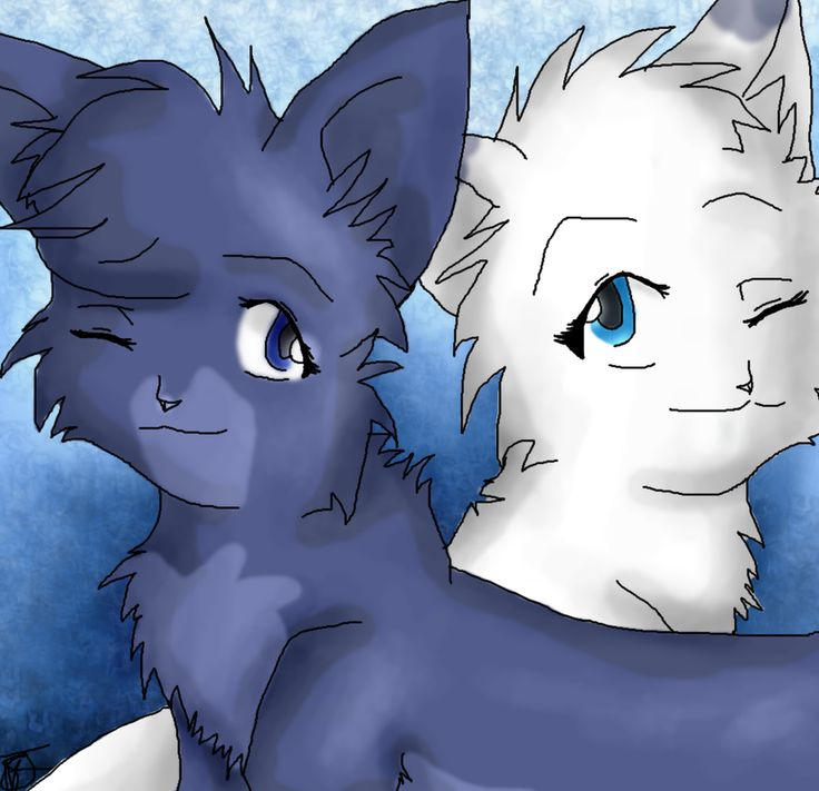 Warrior Cats Game: 38 Best Images About Snowfur On Pinterest