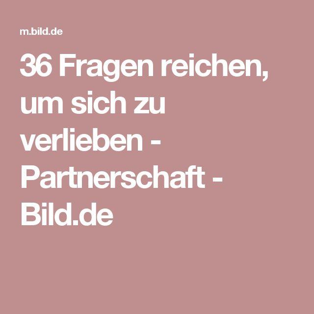 36 Fragen reichen, um sich zu verlieben  - Partnerschaft - Bild.de