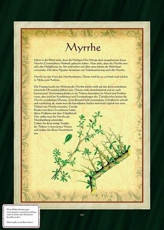 Myrrhe                                                                                                                                                                                 Mehr