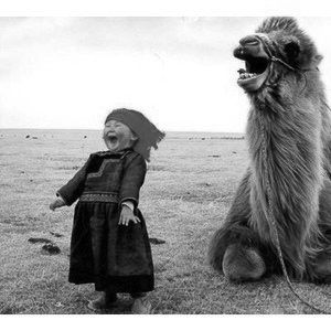 Every little Girl needs a Laughing Camel