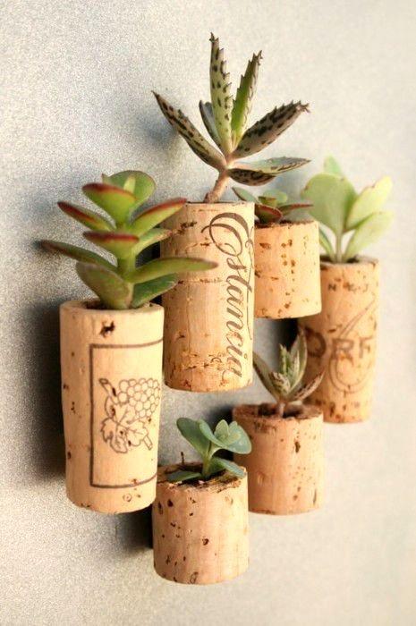 Cactus Corks