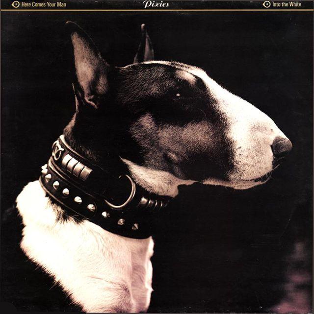 Vaughan Oliver / Pixies