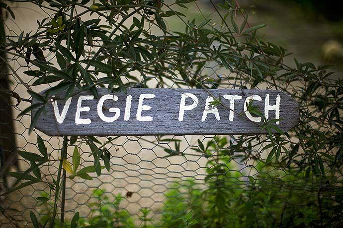 Margan Restaurant's Kitchen Garden Vegie Patch. #HunterValley