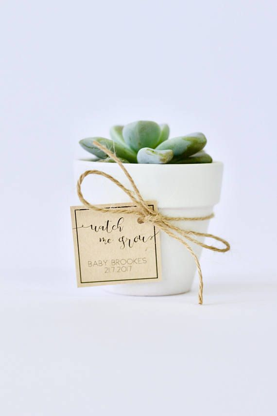 If you are looking for a unique but simple (and cheap!) DIY Baby Shower Favor for your guests, then look no further!  This printable Watch me Grow Tag is customised with your details, and sent to you in high resolution JPG and PDF files for you to print. Choose kraft paper, white/cream paper, or really any coloured card that suits your Baby Shower theme! Then simply attach to your potted plant with twine or paper strands and you are done!