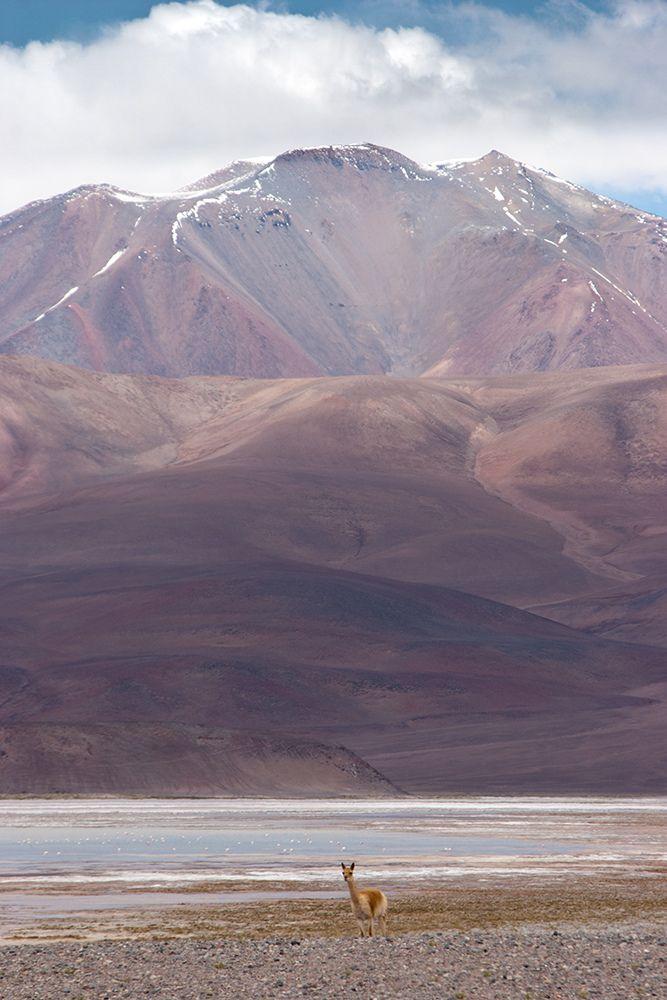 Monte Pissis, Catamarca, #Argentina