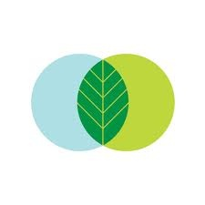 I like the idea of overlapping two circles to make this leaf for this company.