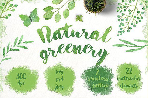 Watercolor natural greenery by IrinaUsmanova on @creativemarket