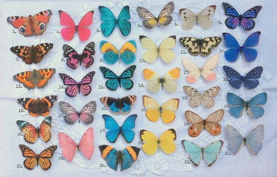 Hand cut silk butterfly hair clips - Pick and mix selection of 5