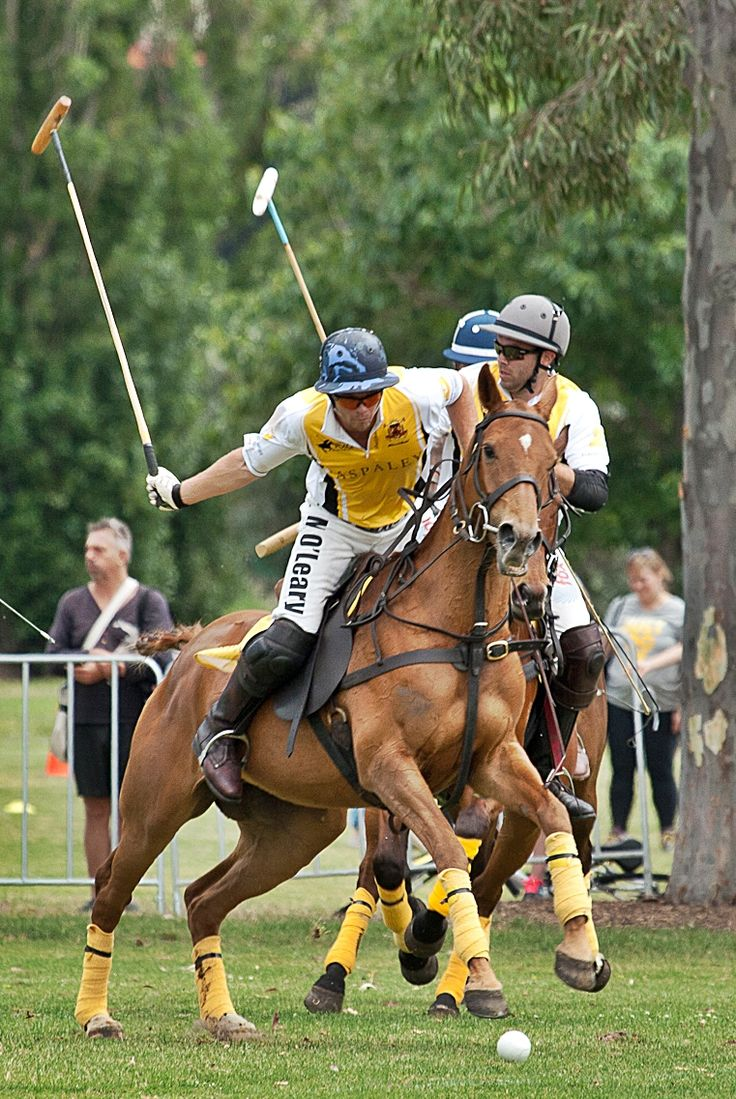 Polo in the City, Melbourne, 2013.