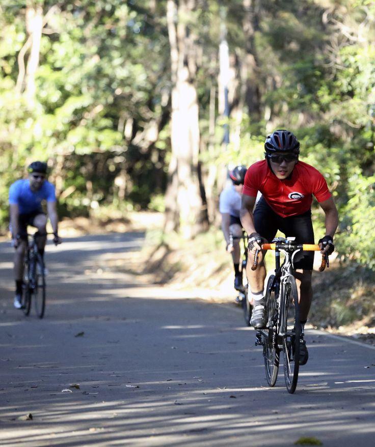 Australian Two Monkeys Cycling ride kit. Team kit available online www.twomonkeyscycling.com.au