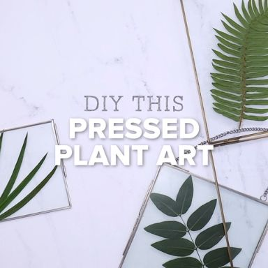DIY Pressed Plant Hanging Garden                                                                                                                                                                                 More