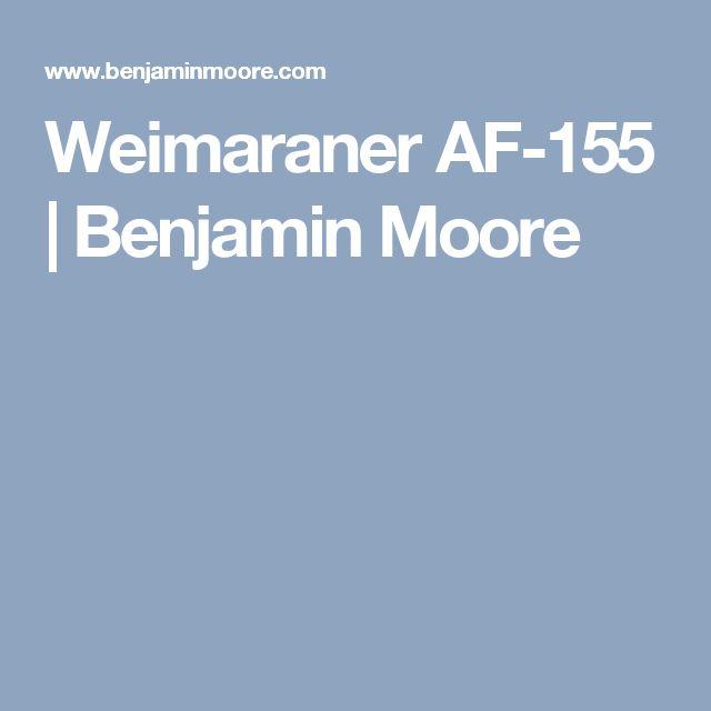 Weimaraner AF-155  | Benjamin Moore