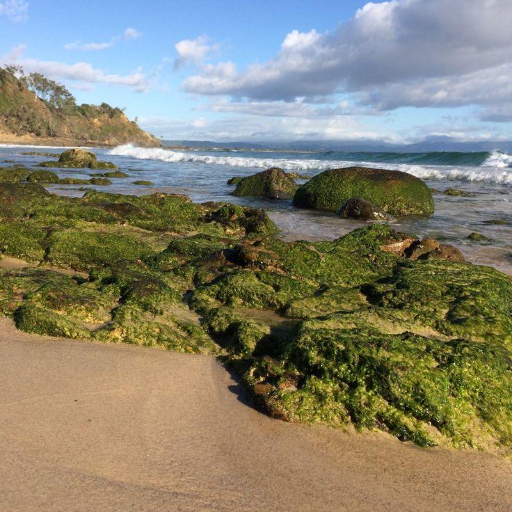 WATEGOS SEAWEED AND SURF