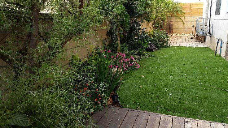 דק דשא צמחיה ועיצוב גינה