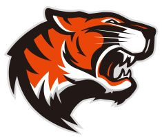 Vector Art and Design by http://keithhoffart.weebly.com - Tiger head mascot 2 vector art illustration