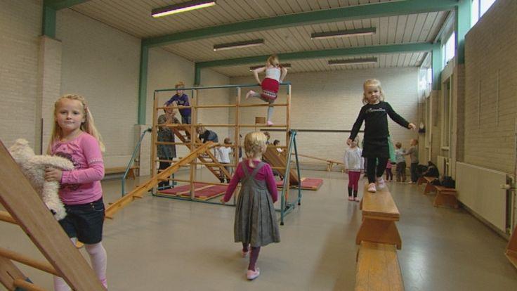 Flip speelt tijdens de gymles mee met pietengymnastiek. Ze klimmen en klauteren op de daken, balanceren op de rand en brengen natuurlijk de pakjes voor Sinterklaas naar het juiste huis.
