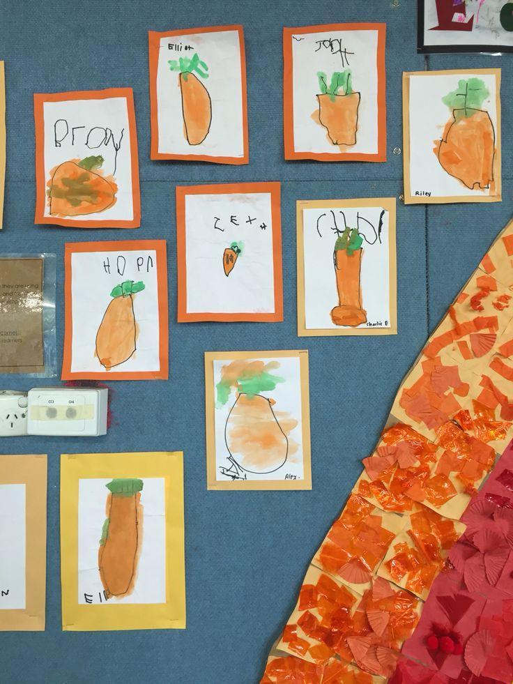 Carrot still life