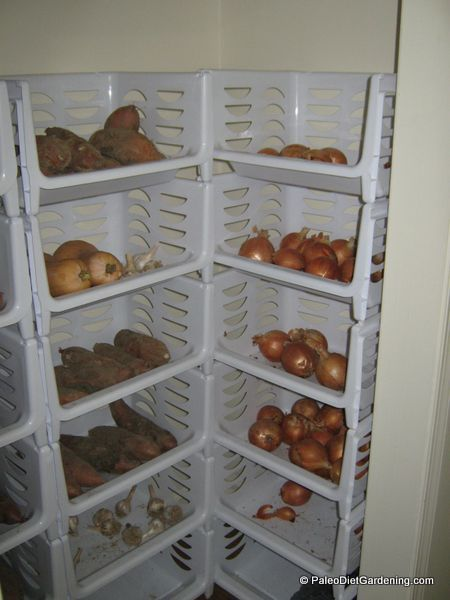 How We Store Our Vegetables Without A Root Cellar | Paleo Diet Gardening - See more at: http://paleodietgardening.com/how-we-store-our-vegetables/#sthash.zjcxdb8O.dpuf
