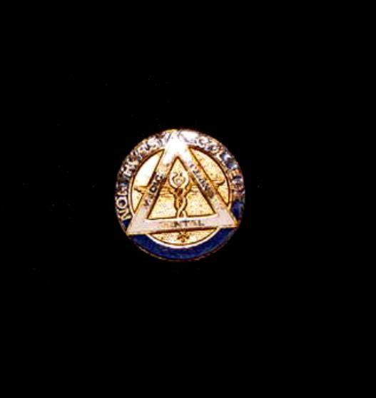 Vintage Northwest College Medical Veterinary Dental Enameled Lapel Pin Badge | eBay