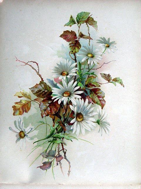 Gallery.ru / Фото #6 - Цветы на европейских открытках ретро - ladushka333