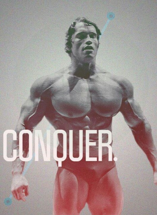 90 Best Fitness Images On Bodybuilder Bodybuilding And Conquer Arnold Wallpaper Quote