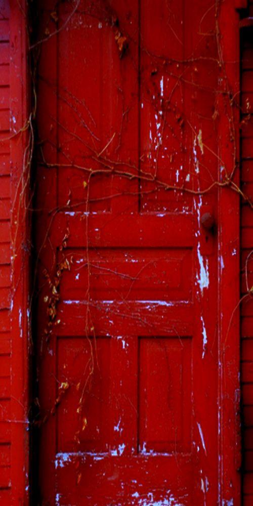 ♦old red door♦                                                       …