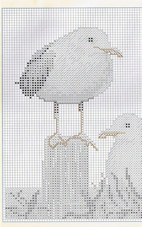 seagull nesting 2/4