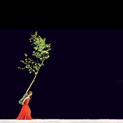 More to life than baked desserts.     Why not carry a tree on stage....or build a waterfall or plant a field of flowers and dance in them in front of an audience. The great choreographer Pina Bausch did it all.