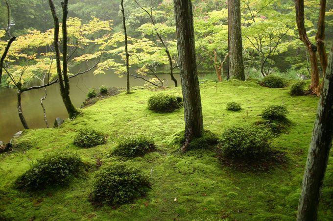 いざ、あなたの知らない京都へ!京都おすすめ観光スポットランキングTOP30 | RETRIP