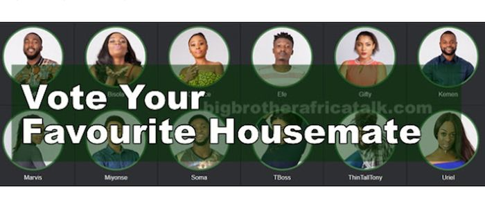 How to vote for your favourite housemate in Big Brother Naija 2017 (