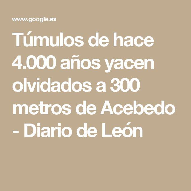 Túmulos de hace 4.000 años yacen olvidados a 300 metros de Acebedo - Diario de León