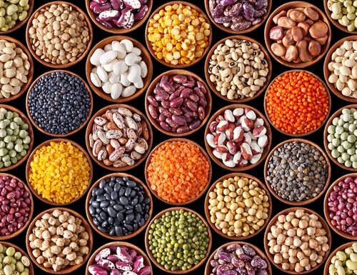 Of all legumes and nuts, lentils contain the third-highest levels of protein. 26 percent of lentil's calories are attributed to protein, which makes them a great source of protein for vegetarians and vegans.