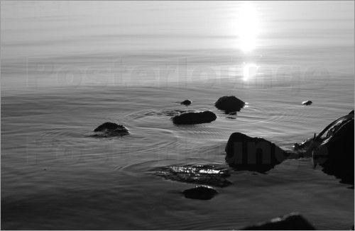 Steine im Wasser Schwarz-Weiss Poster von Tanja Riedel