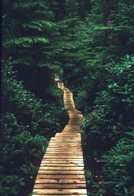 West Coast Trail, B.C.
