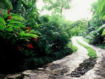 Panama Garden - tropical - landscape - miami - Raymond Jungles, Inc.