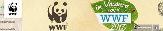 Canale di WWFTurismo http://www.tuttosuyoutube.it/nuovo-canale-di-youtube-creare-la-grafica-per-lheader/ #youtube #youtubemarketing #video #graphics #design #ispiration